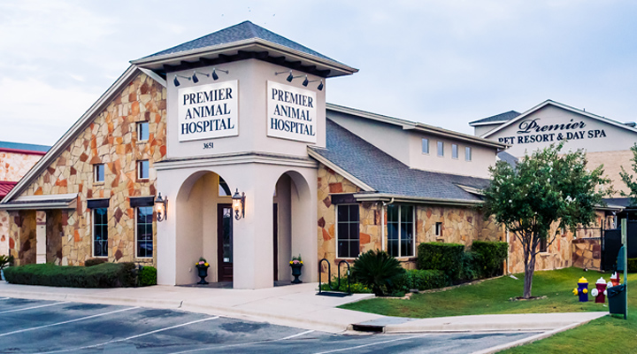 Hospital Picture of VCA Premier Animal and Pet Resort