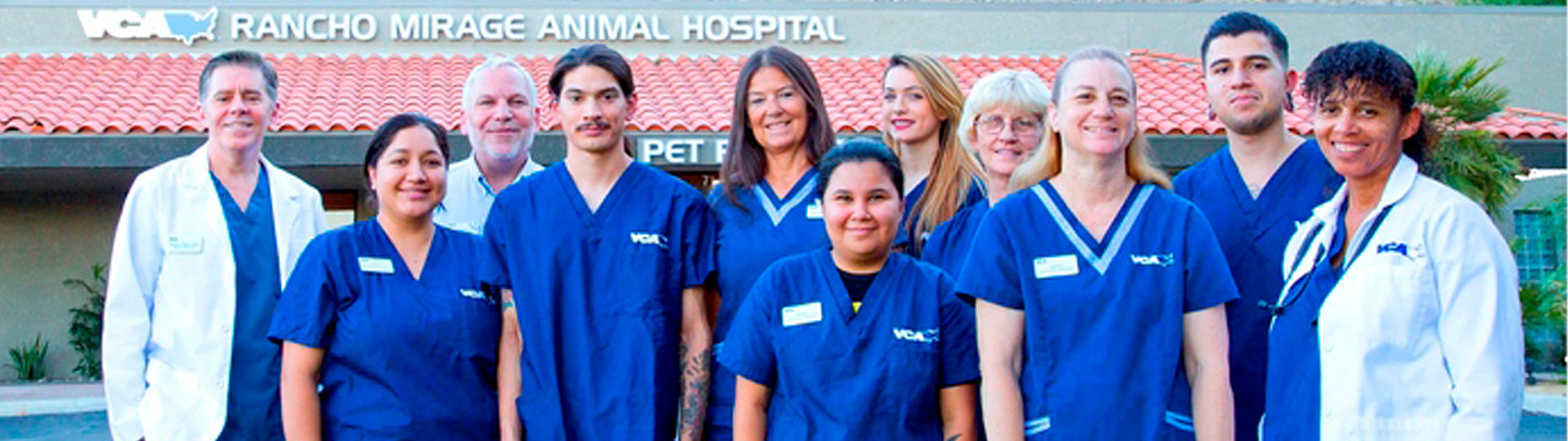 Team Picture of VCA Rancho Mirage Animal Hospital