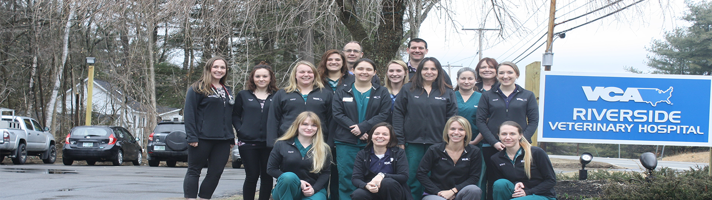 Team Picture of VCA Riverside Veterinary Hospital