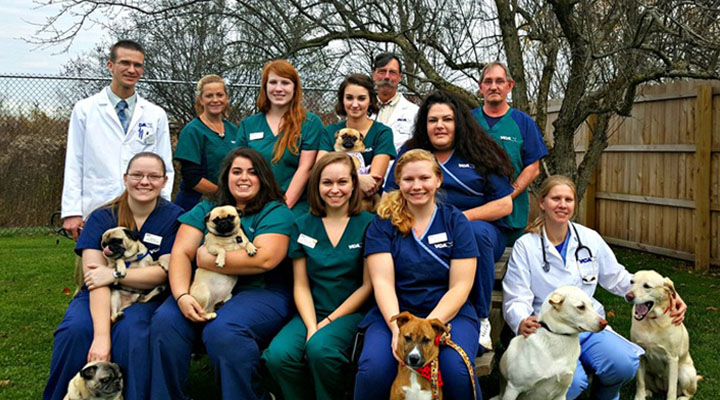 Homepage Team Picture of VCA Rome Animal Hospital
