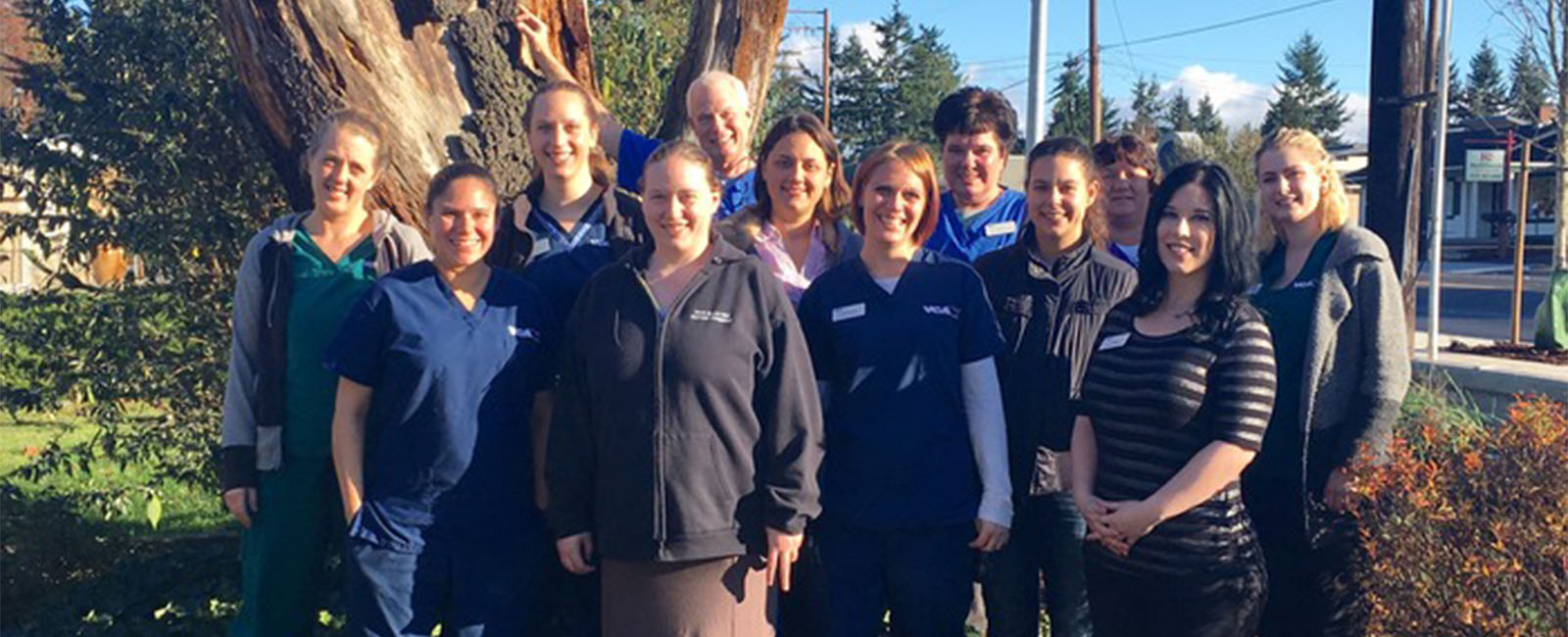 Homepage Team Picture of VCA Rose Hill Animal Hospital
