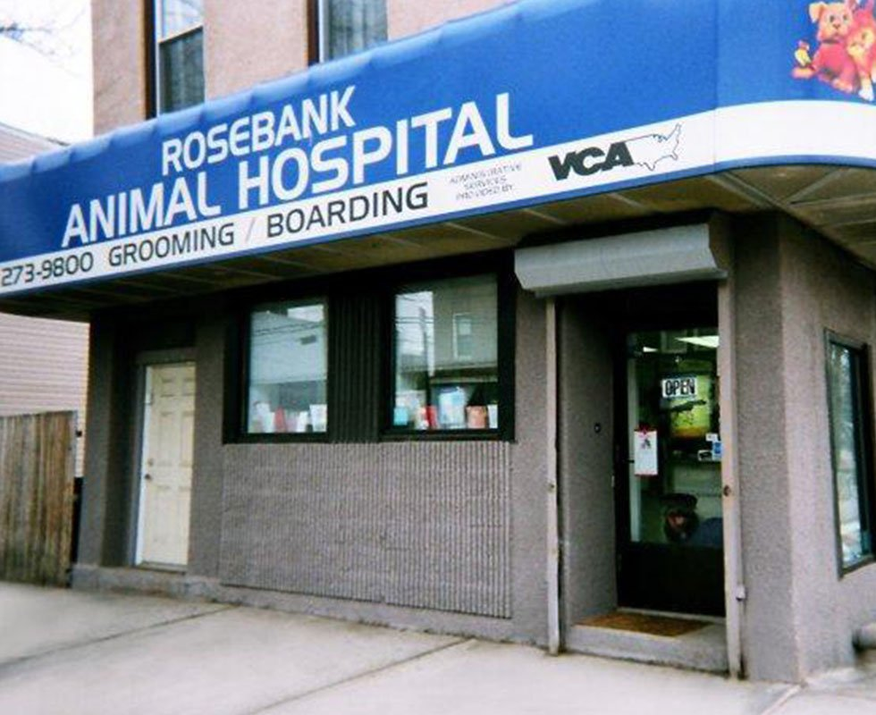Hospital Picture of VCA Rosebank Animal Hospital