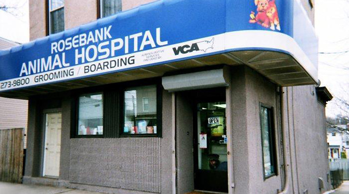 Homepage Hospital Picture of VCA Rosebank Animal Hospital