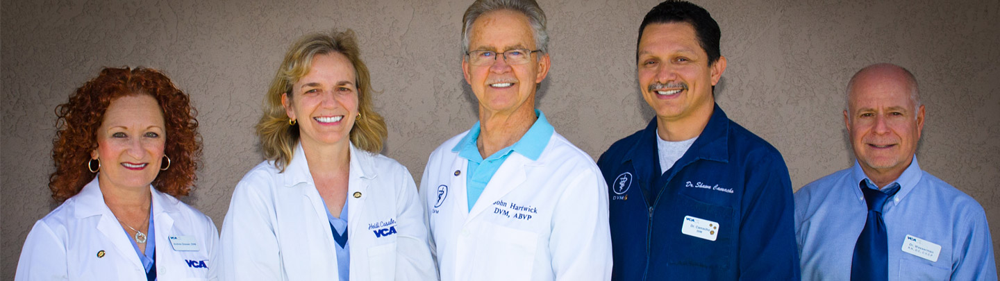 Team Picture of VCA Rossmoor Animal Hospital