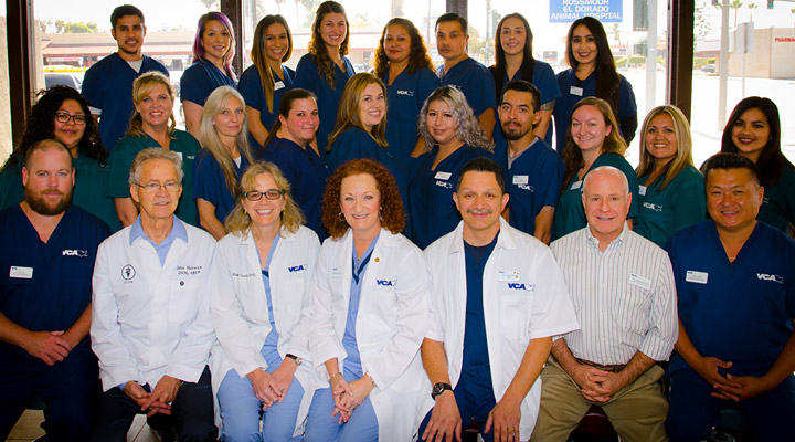 Homepage Team Picture of Rossmoor-El Dorado Animal Hospital