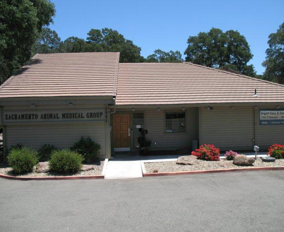 Hospital Picture of  VCA Sacramento Animal Medical Group