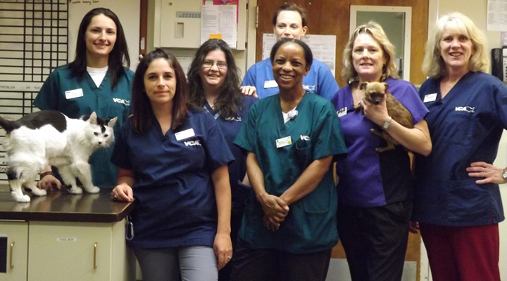 Team Picture of VCA Sacramento Animal Medical Group