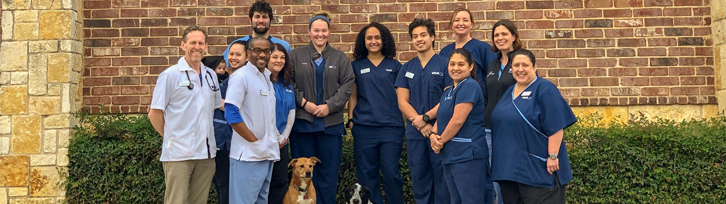 Team Picture of VCA Saginaw Animal Hospital