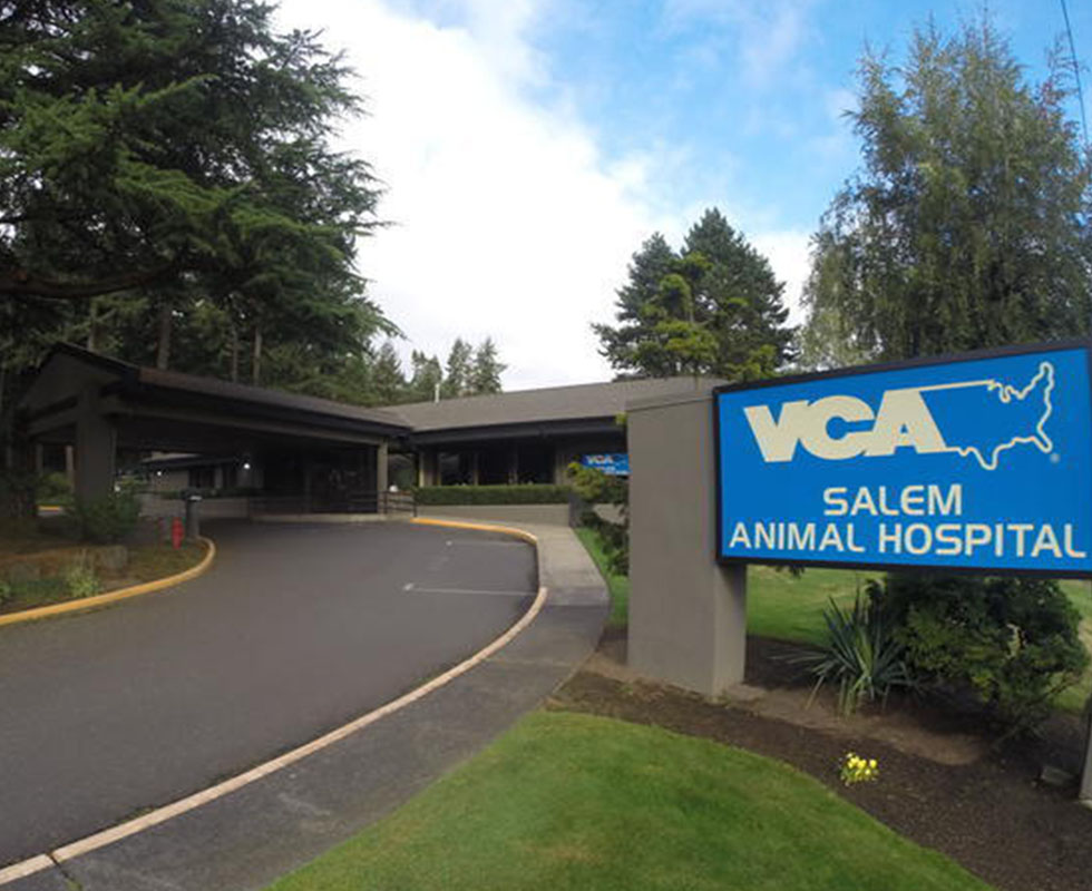 Hospital Picture of VCA Salem Animal Hospital