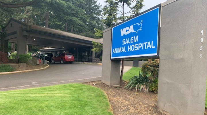 VCA Salem Animal Hospital