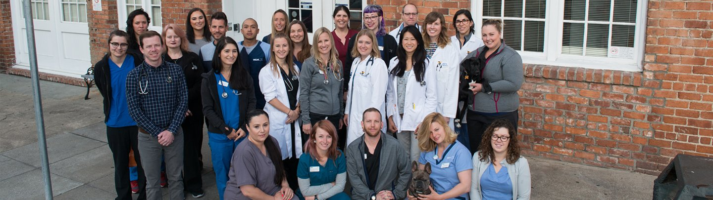 Team Picture of VCA San Francisco Veterinary Specialists