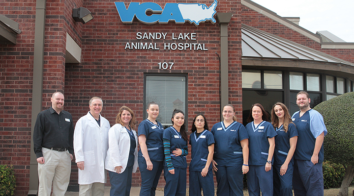 Homepage Team Picture of VCA Sandy Lake Animal Hospital