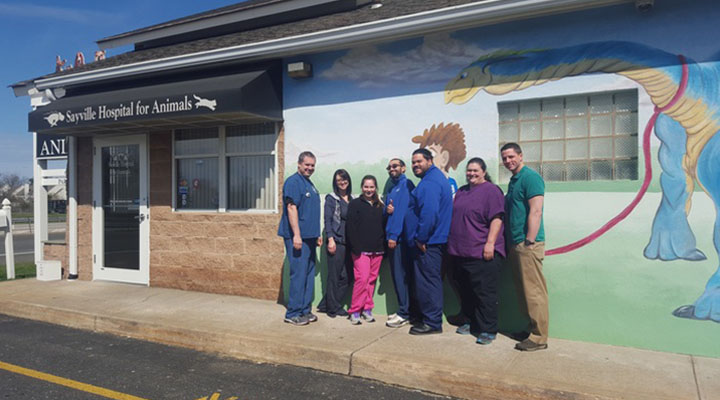 Homepage Team Picture of VCA Sayville Animal Hospital