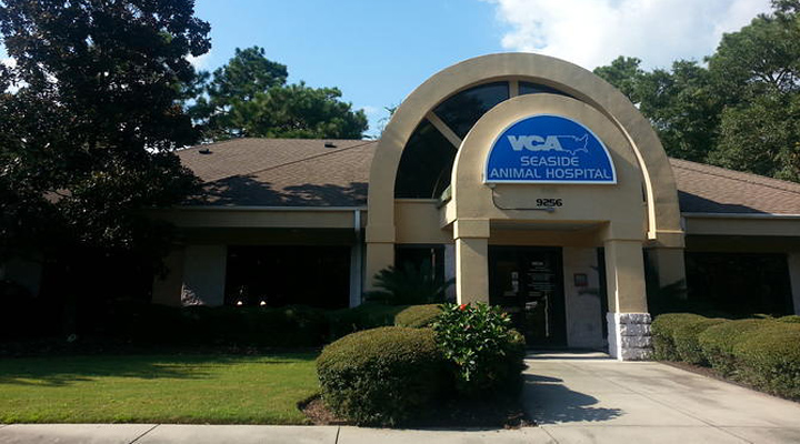 Homepage Hospital Picture of VCA Seaside Animal Hospital