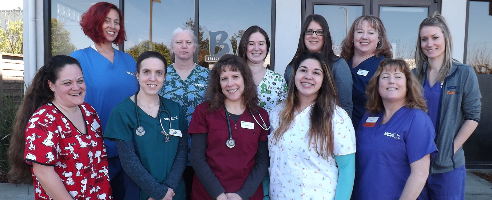 Team Picture of Sequoia Valley Animal Hospital