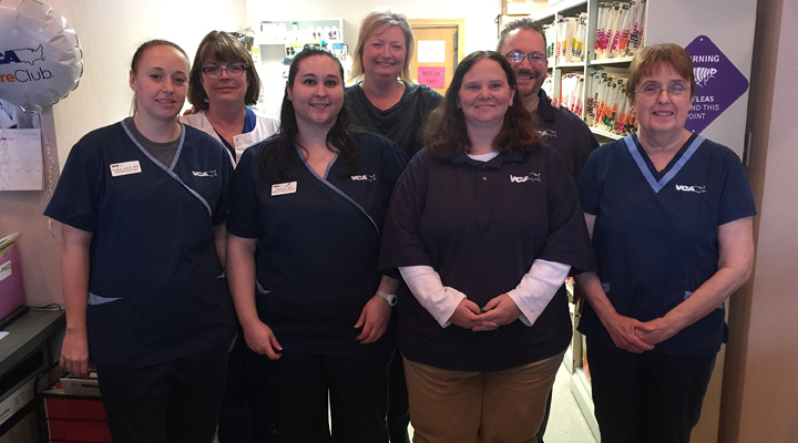 Homepage Team Picture of VCA Shadeland Animal Hospital