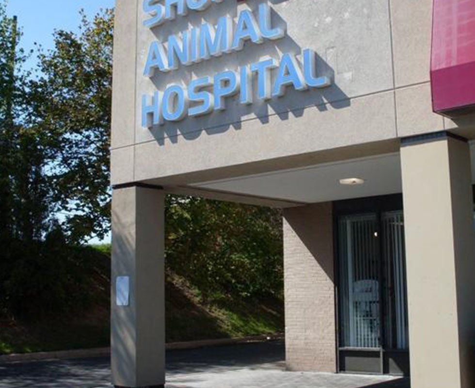 Hospital Picture of VCA Shop City Animal Hospital