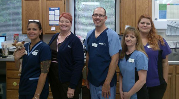 Homepage Team Picture of VCA Shop City Animal Hospital