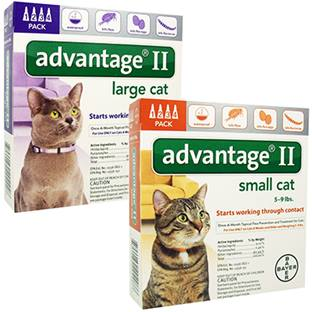 Advantage® II Cat