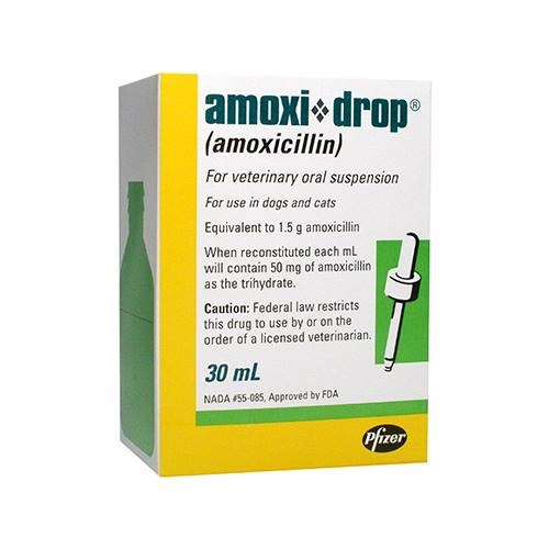 Amoxi-Drop® Oral Suspension