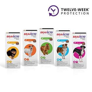 Bravecto® Chews for Dogs