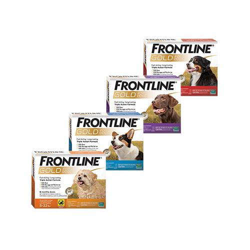 FRONTLINE® Gold Canine
