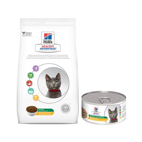Hill's® Healthy Advantage® Kitten Chicken Entrée Feline - Canned
