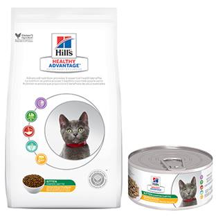 Hill's® Healthy Advantage® Kitten Feline - Dry