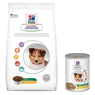 Hill's® Healthy Advantage® Puppy Chicken & Vegetables Entrée Canine - Canned