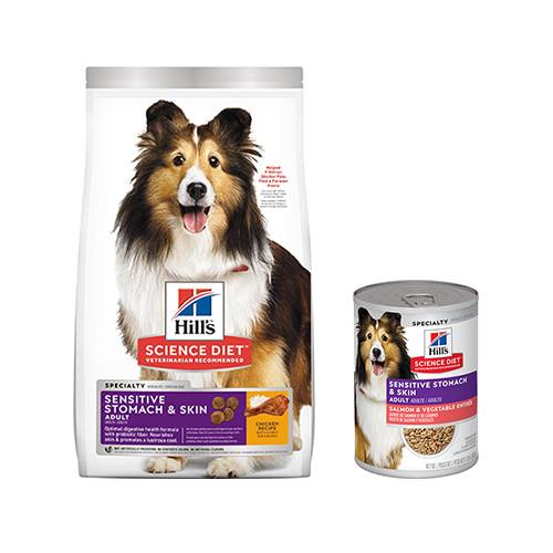 Hill's® Science Diet® Adult Sensitive Stomach & Skin Canine - Dry