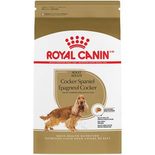 ROYAL CANIN® BREED HEALTH NUTRITION™ Cocker Spaniel Adult Breed Specific dry dog food