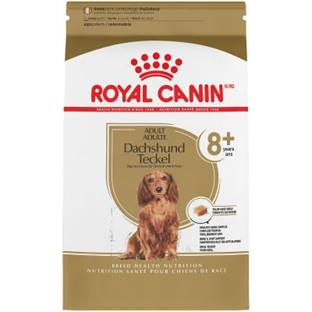 ROYAL CANIN® BREED HEALTH NUTRITION® Dachshund 8+ Adult Dry Dog Food