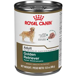 ROYAL CANIN® BREED HEALTH NUTRITION® Golden Retriever Loaf in Sauce Breed Specific dog food