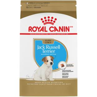 ROYAL CANIN® BREED HEALTH NUTRITION® Jack Russell Terrier Puppy Breed Specific dry dog food