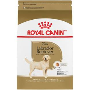 ROYAL CANIN® BREED HEALTH NUTRITION™ Labrador Retriever Adult Breed Specific dry dog food