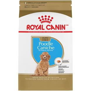ROYAL CANIN® BREED HEALTH NUTRITION™ Poodle Puppy Breed Specific dry dog food