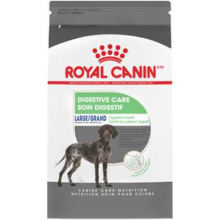 ROYAL CANIN® SIZE HEALTH NUTRITION™ Large Digestive Care Dry Dog Food
