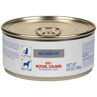 ROYAL CANIN VETERINARY DIET® Feline and Canine RECOVERY® RS in Gel canned cat and dog food