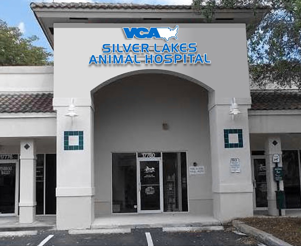 Hospital Picture of VCA Silver Lakes Animal Hospital