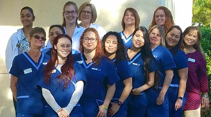 Homepage Team Picture of VCA Silver Lakes Animal Hospital