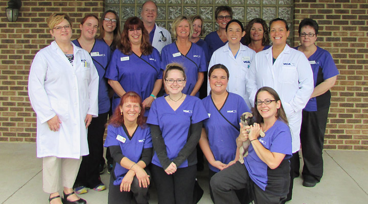 Homepage Team Picture of VCA Sinking Spring Animal Hospital