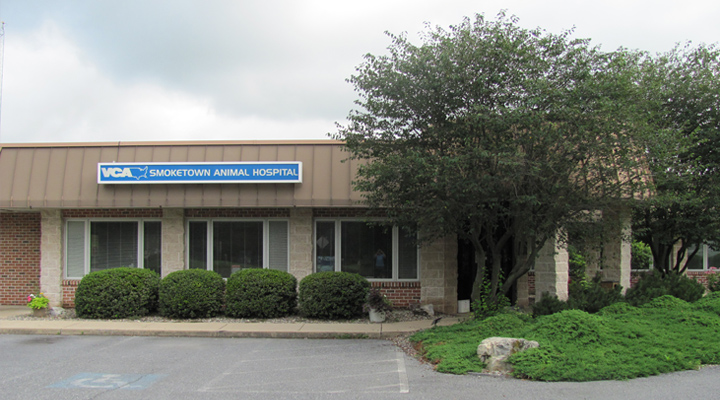 Homepage Hospital Picture of VCA Smoketown Animal Hospital