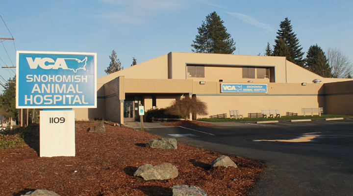 Homepage Hospital Picture of VCA Snohomish Animal Hospital