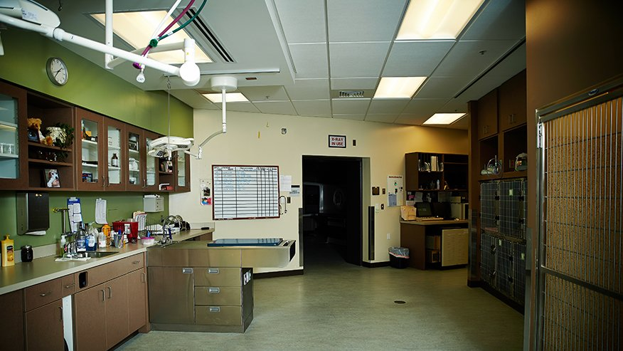 Oncology department equipment