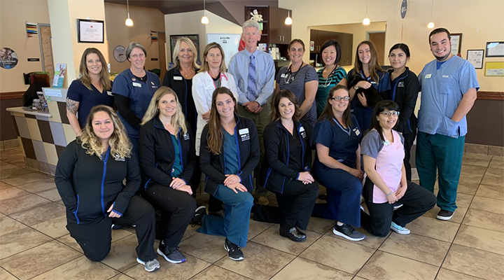 Team Picture of VCA South County Animal Hospital