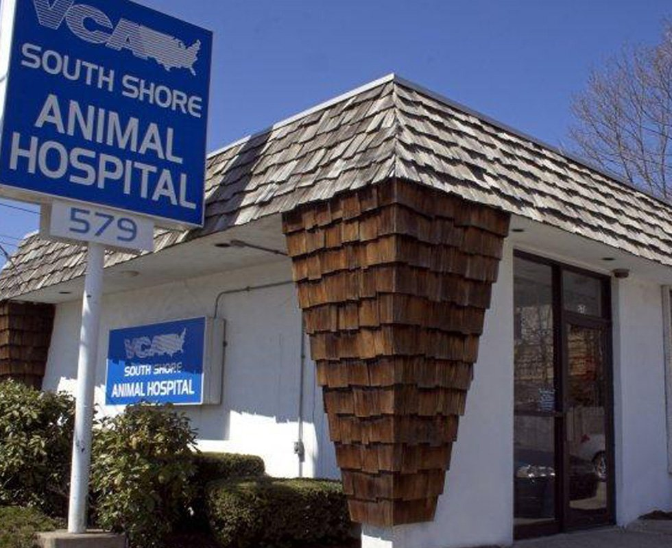 Hospital Picture of VCA South Shore Quincy Animal Hospital