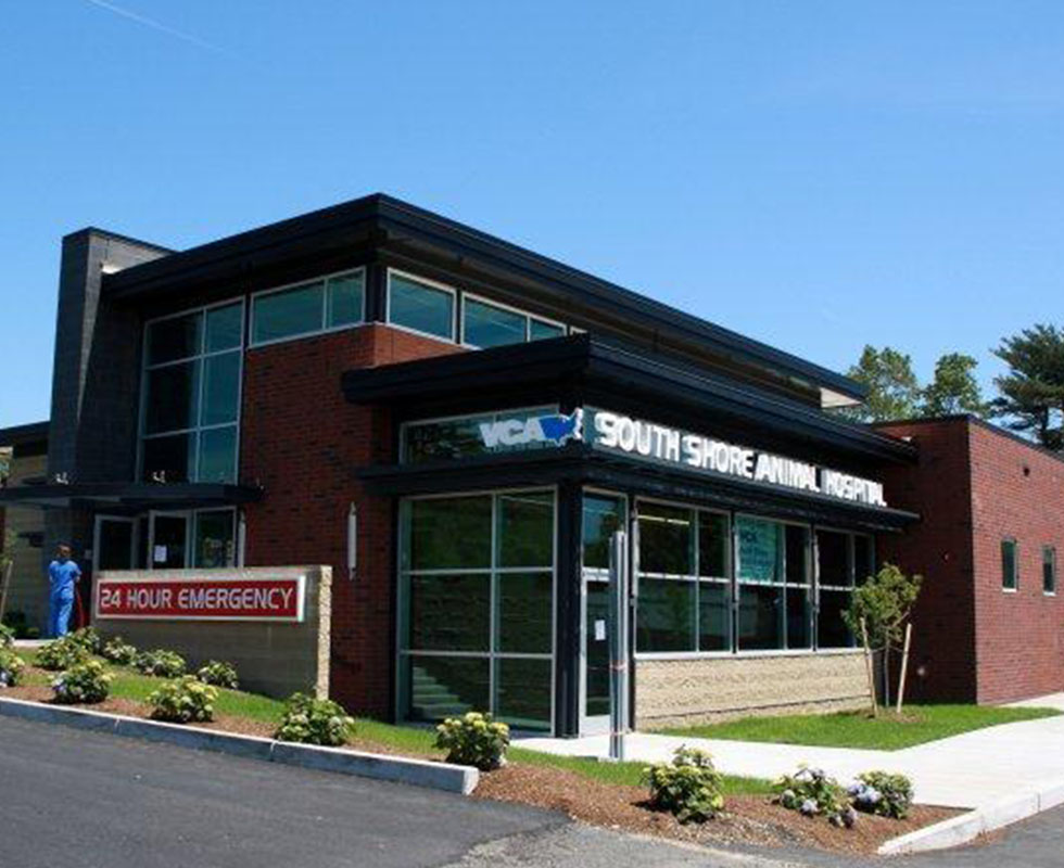 Hospital Picture of VCA South Shore (Weymouth) Animal Hospital