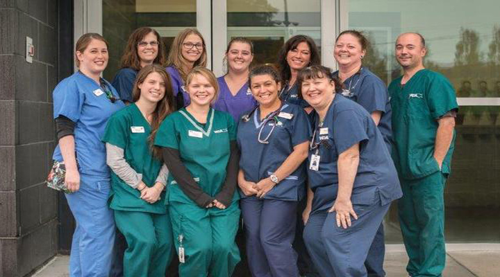 Team Picture of VCA South Shore (Weymouth) Animal Hospital