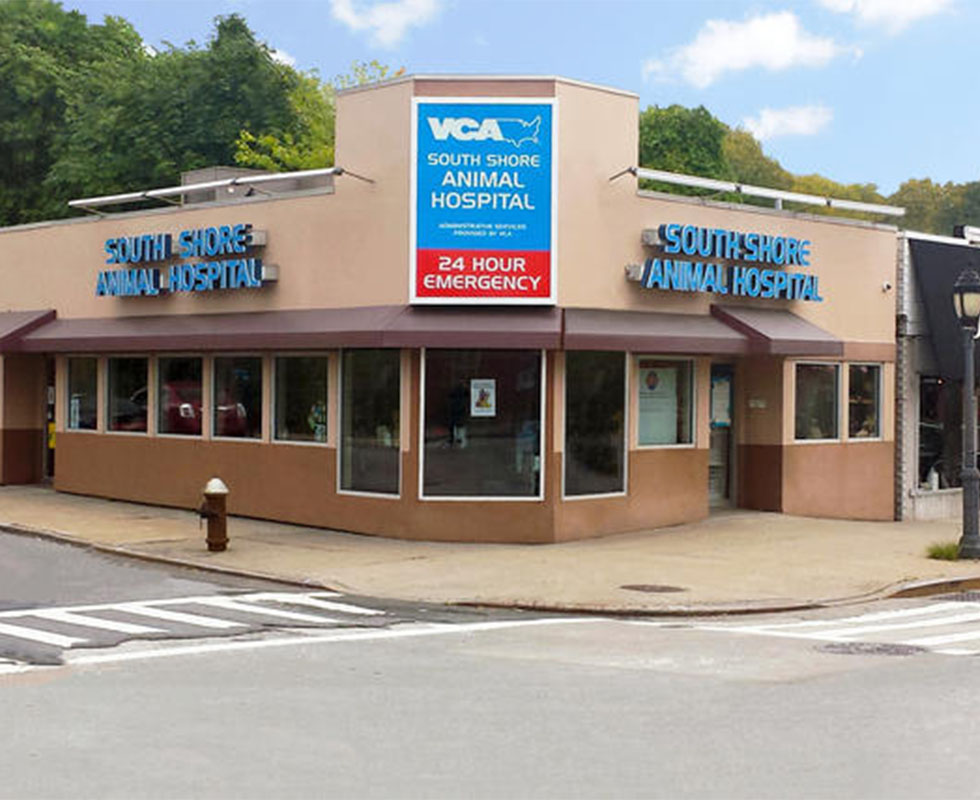 Hospital Picture of VCA SouthShore Animal Hospital