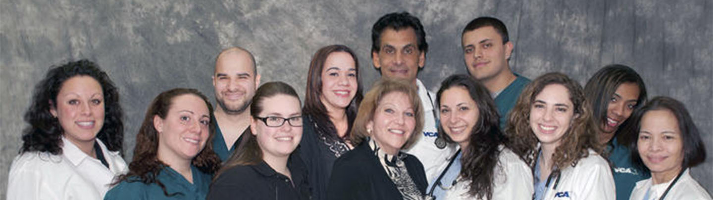 Team Picture of VCA SouthShore Animal Hospital